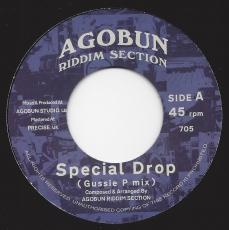 Agobun Riddim Section