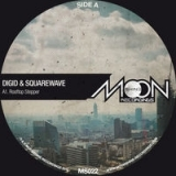 Digid, Squarewave