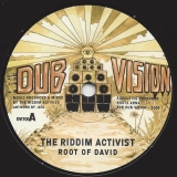 The Riddim Activist