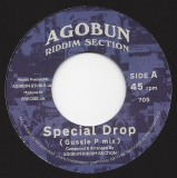Agobun Riddim Section