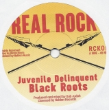 Black Roots feat. Dub Judah