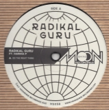 Radikal Guru ft. Marina P